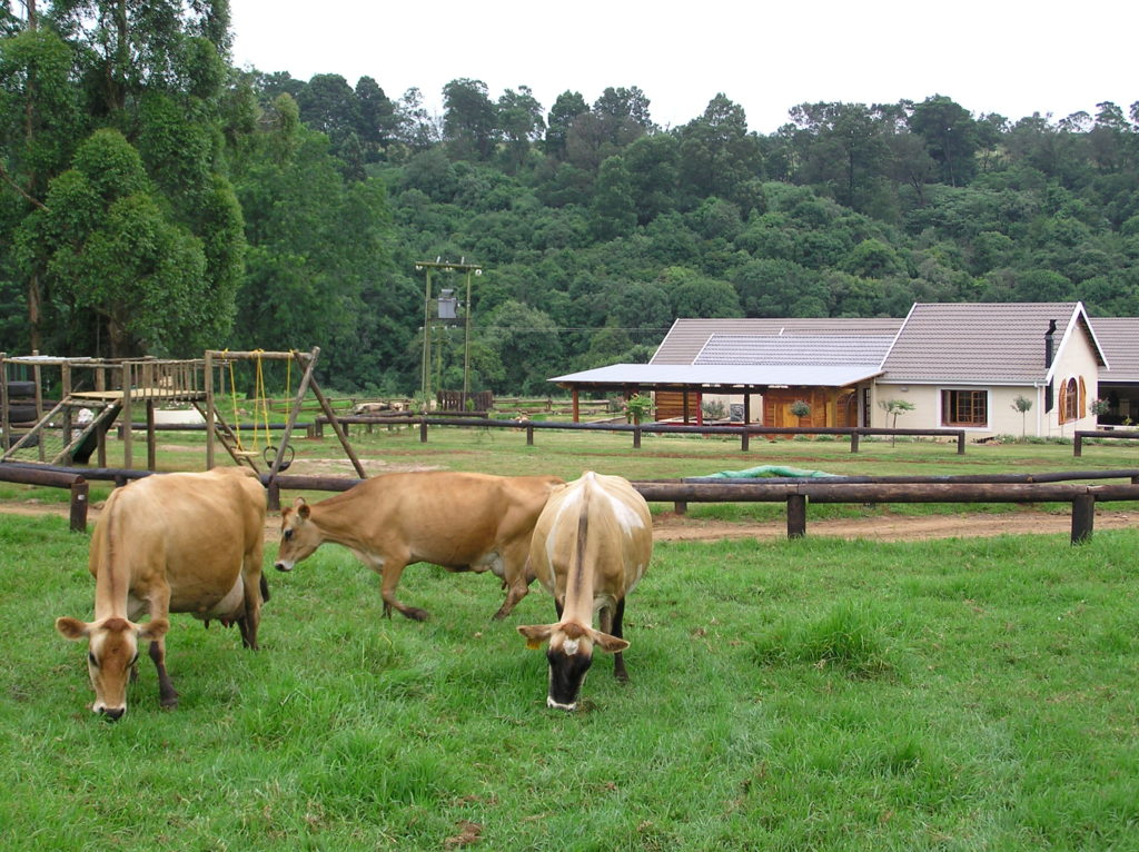 Imbiza Designs Farm